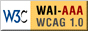 W3C-WAI Web Content Accessibility Guidelines 1.0